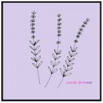 illustration lavender from edith dourleijn on edie eats food blog
