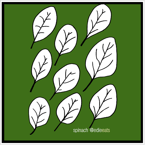 SPINACH illustration and recipe by EDIE EATS Food Blog by Edith Dourleijn