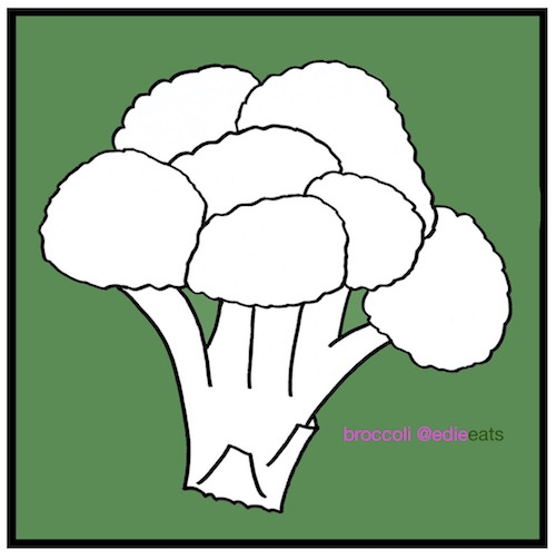 Chinese take-away style Beef and Broccoli - broccoli-Recipe and Illustration by EDIE EATS food blog by Edith Dourleijn-small
