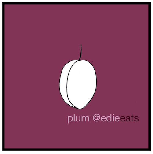 Recipe Italian plum cake - plum illustration by EDIE EATS food blog by Edith Dourleijn